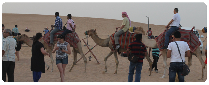 Camel Safari Dubai, Camel safari tour dubai